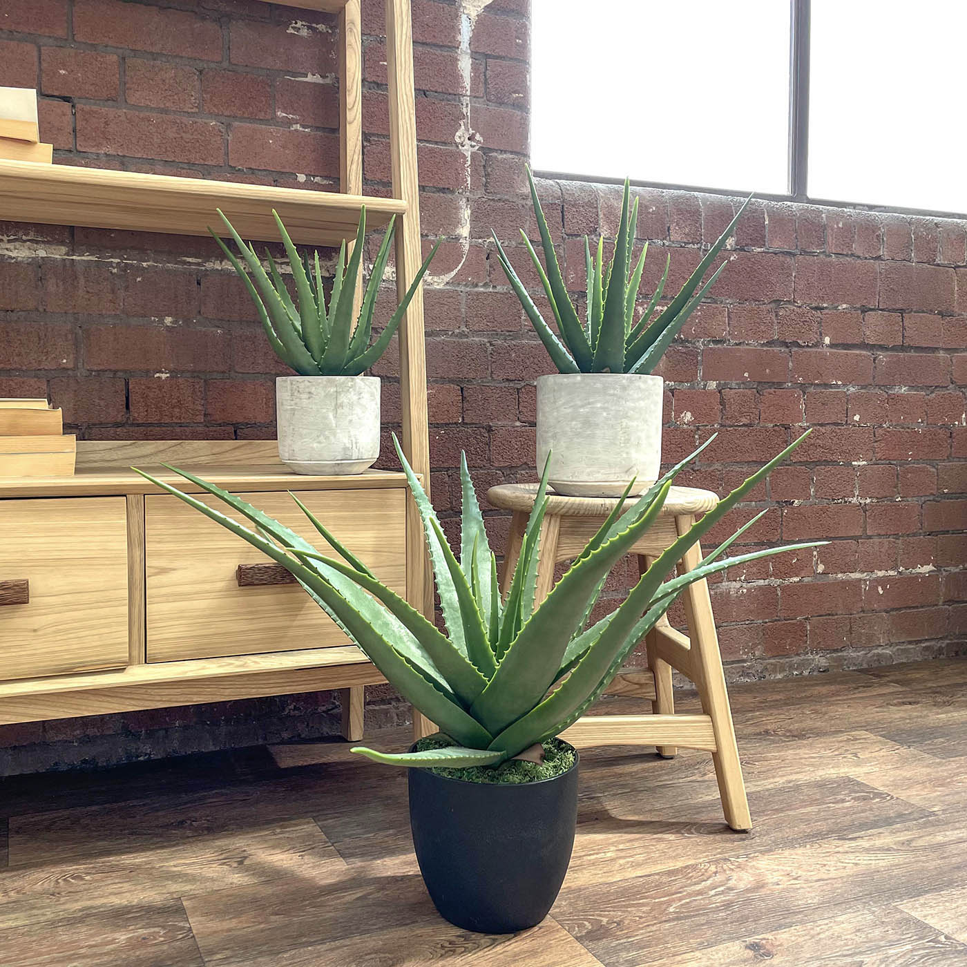 Three sizes of artificial allow vera plants on display