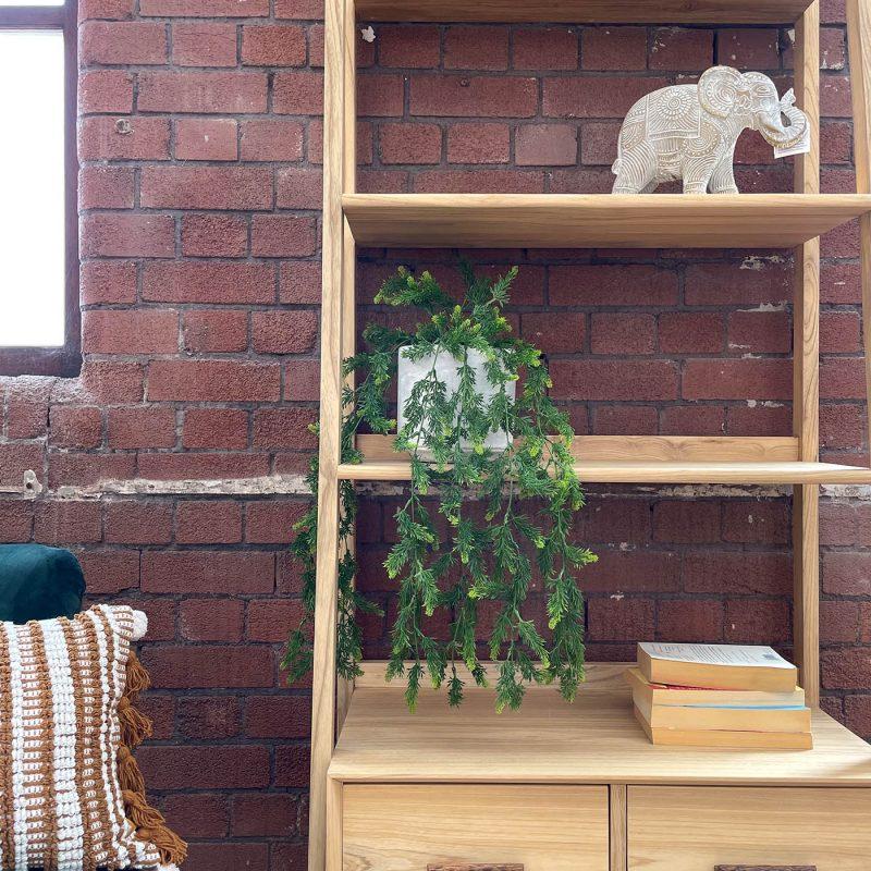 artificial hanging asparagus plants