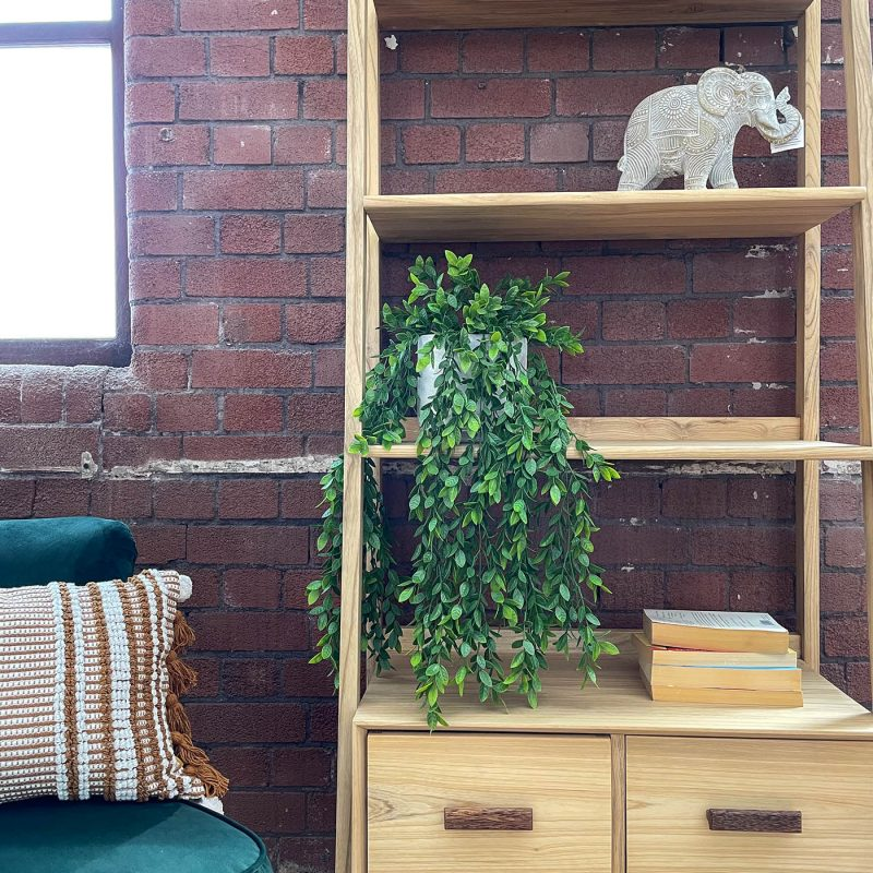 artificial hanging plant ficus