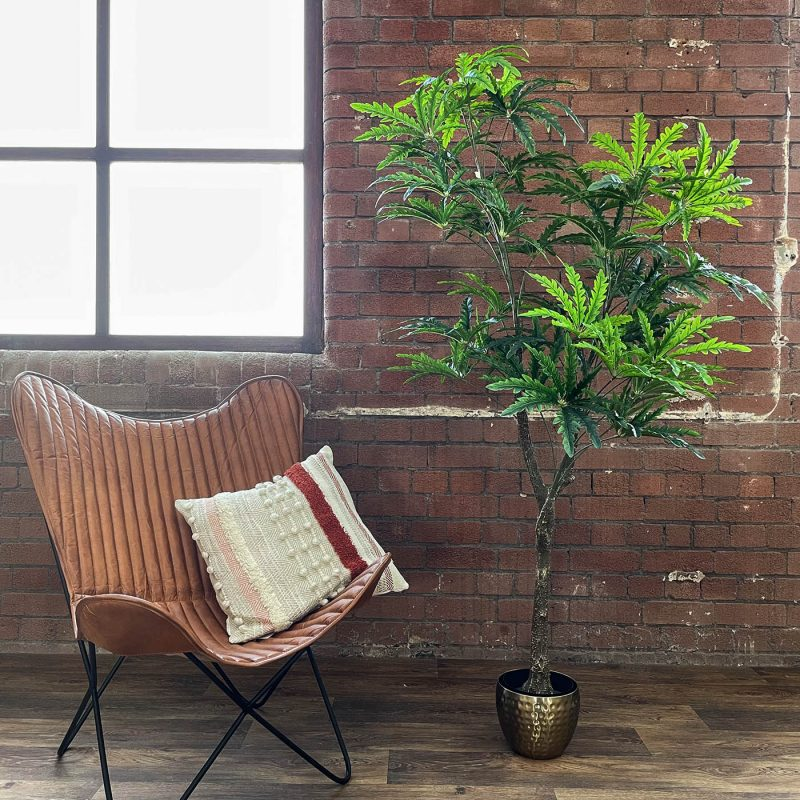 artificial pelandra elegantissima plant